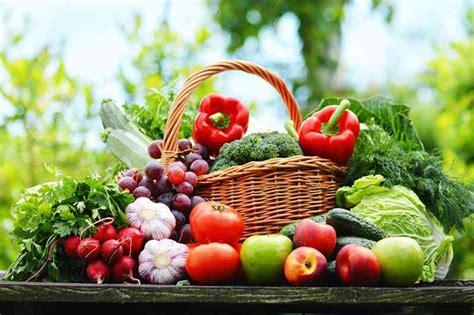 wellness food wellness sedona retreat treatments spiritquest
