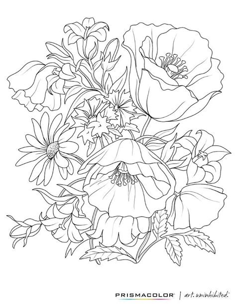 grown up coloring pages of flowers 3362 best coloring images on pinterest coloring pages