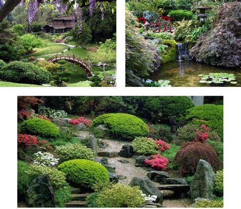 japanse tuin planten kopen japanse tuin planten kopen potplanten buiten schaduw