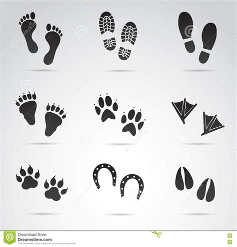 printable animal feet animal foot prints cartoons illustrations vector stock