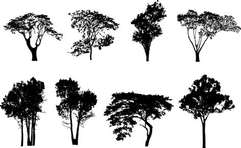 eps native format pine trees silhouette vectors free vector download 9 948