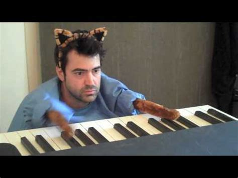 Keyboard Cat Meme - keyboard cat know your meme