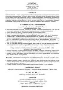 Standard Resumes by Standard Resume Cv Resume Template Exles