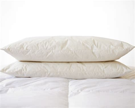 13 best photo of hypoallergenic feather pillows ideas
