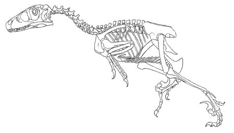 coloring pages of dinosaur bones dinosaur skeleton free coloring pages on art coloring pages