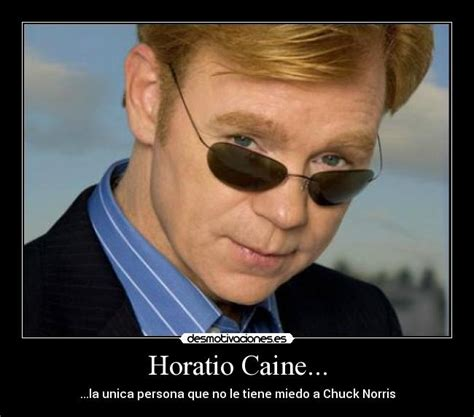 Horatio Caine Memes - horatio caine quotes quotesgram
