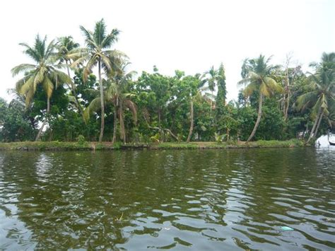 atdc house boat backwater picture of atdc house boat alappuzha tripadvisor