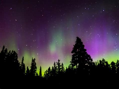 where can u see the northern lights can i see the northern lights in florida sarasota fl patch