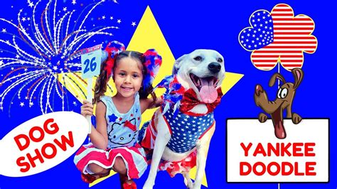 yankee doodle dogs yankee doodle show dogs in patriotic costumes