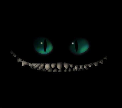 cheshire cat smile wandering cat studio cheshire smile