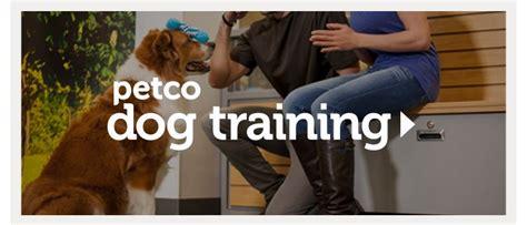 petco puppy classes petco