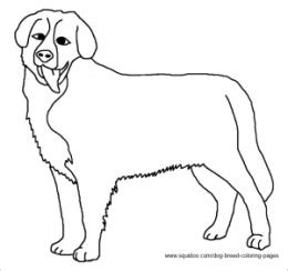 coloring pages of bernese mountain dogs breed coloring pages hubpages