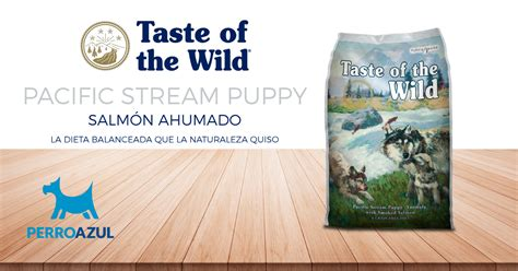 taste of the salmon puppy taste of the pacific puppy de salm 243 n ahumado 13 6kg el perro azul