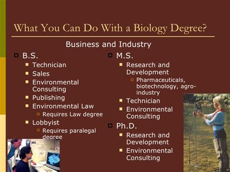 What Can U Do With An Mba Degree by Powerpoint Presentation On The B S Biology Degree