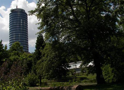 Botanischer Garten Jena by Botanischer Garten Jena 19 Sorbus Domestica Speierling Hausvogelbeere Baum Habitus