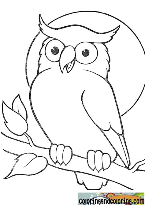 owl coloring pages simple easy owl drawings