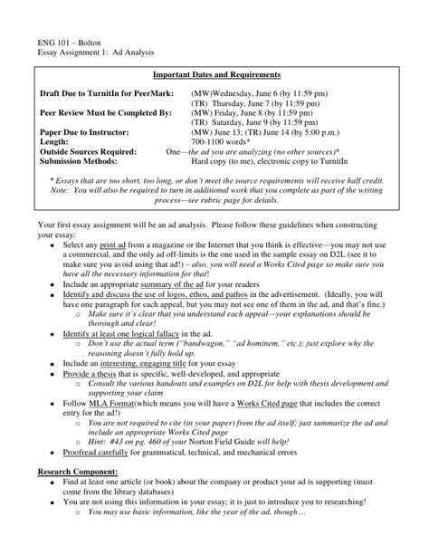 Analysis Of An Advertisement Essay by 101 Essay 1 Ad Analysis