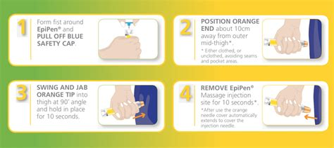 printable epipen instructions epipen 174 user guide