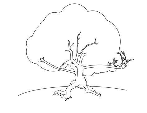 a tree coloring pages