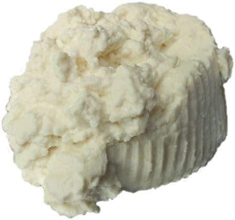 sicilian ricotta di pecora cottage cheese best of sicily