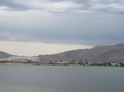 puppy sparks nv learn to sail picture of sparks marina park sparks tripadvisor