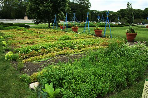 Gardens Farm by Where To Learn About Agriculture In Chicago