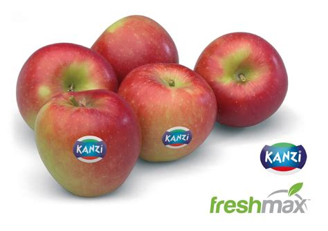 apple new zealand new zealand secures kanzi apple