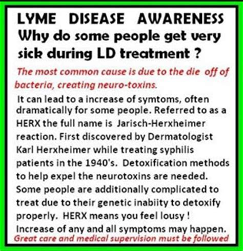What To Expect When Detoxing From Lymes Disease by My Fight Against Lyme Disease