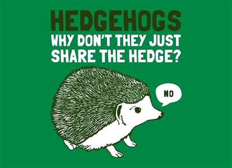 hedgehogs why don t they just share the hedge daily