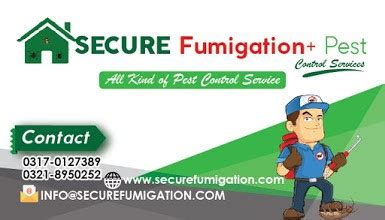fumigation service  karachi bed bugs fumigation