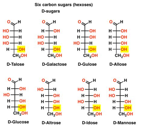 d family carbohydrates d and l sugars master organic chemistry