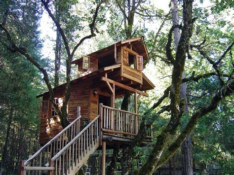 treehouse house world s most awesome treehouse hotels travefy