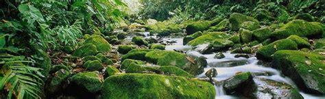 best in costa rica 16 best costa rica hiking trails costa rica experts