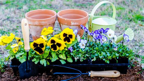 ready for spring how to get your garden ready for spring planting gizmodo