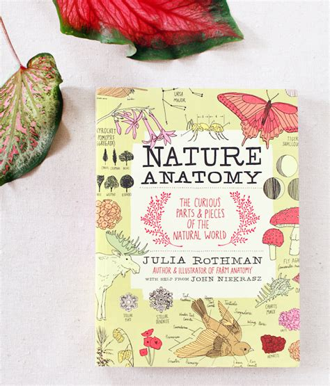farm anatomy julia rothman julia rothman s nature anatomy