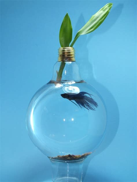 upcycled light bulbs 1000 images about light bulbs who knew on