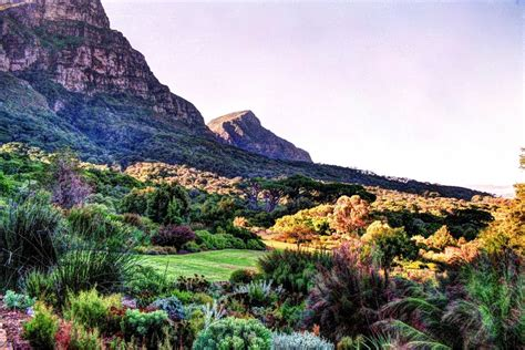 Panoramio Photo Of Kirstenbosch National Botanical Botanical Gardens Cape Town
