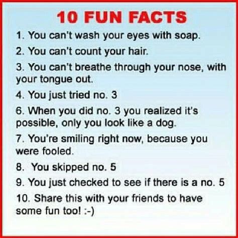 5 Silly Things To Make You Laugh by 10 Facts Things That Make You Laugh