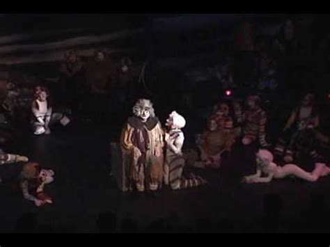 curtain call players gus the theatre cat curtain call players youtube