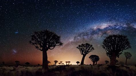 bing images beautiful moon joshua tree national park at night plus