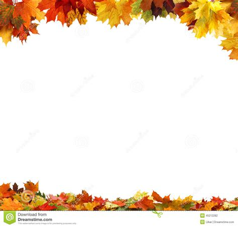 Autumn Leaves On White Background Stock Photo Image Of Maple Flora 45212282 Fall Leaves On White Background