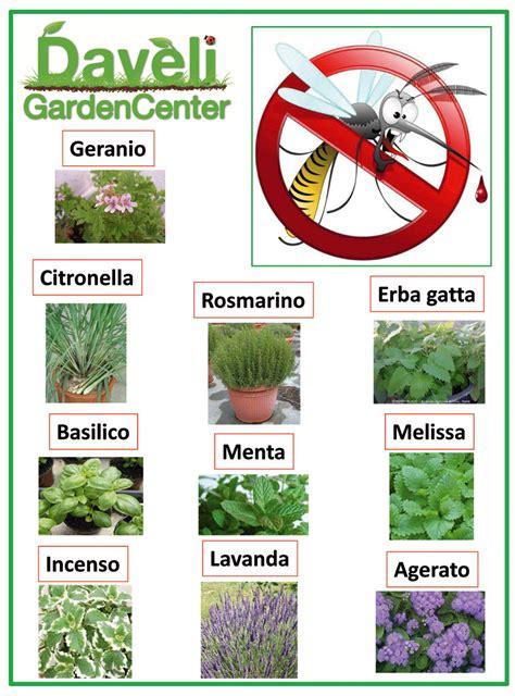 piante da giardino contro le zanzare le piante anti zanzara daveli
