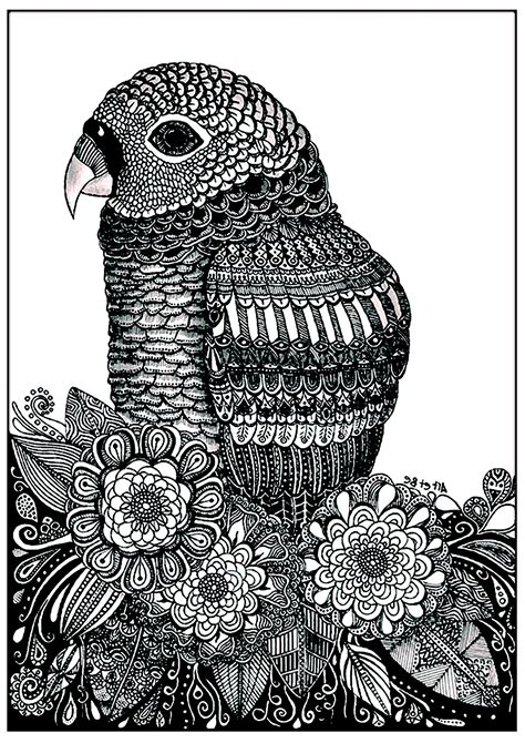 parrot flowers birds adult coloring pages