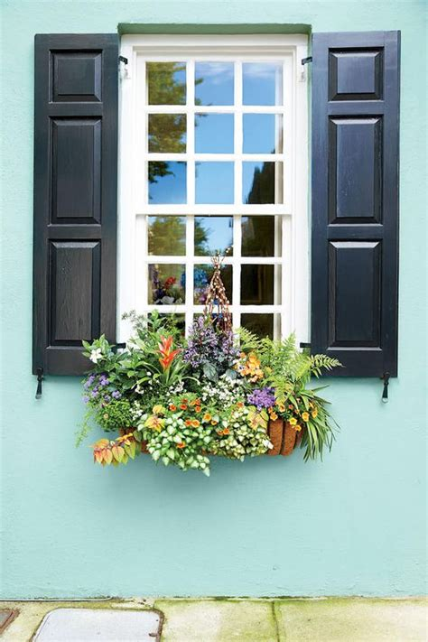 exterior window boxes lovely window boxes to beautify your house exterior