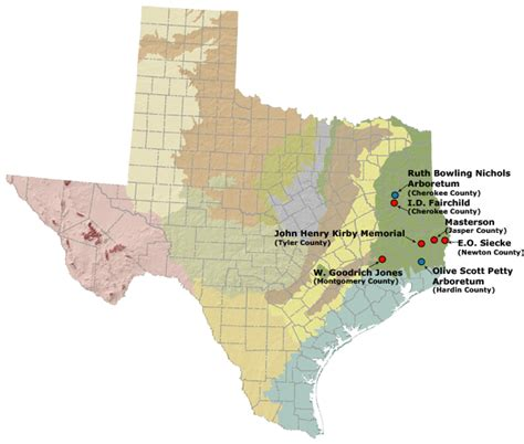 texas forests map texas national forest map afputra