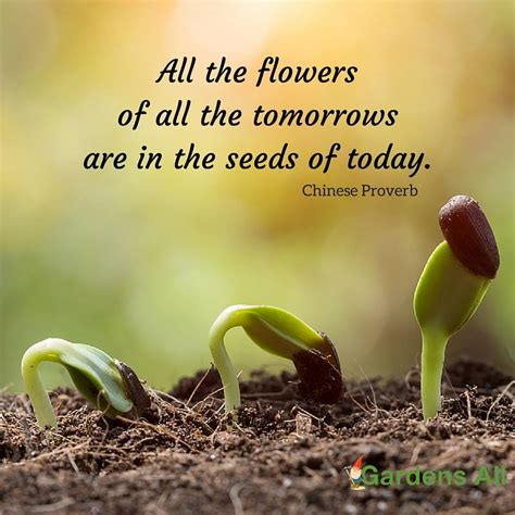 flower garden quotes garden memes quotes and sayings for growth and