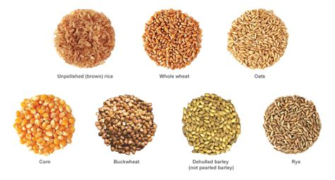 2 exles of whole grains types of whole grains related keywords types of whole