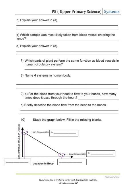 the circulatory system worksheet primary science human circulatory system hannahtuition