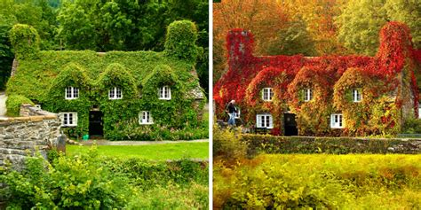 After Nature by 12 Before And After Photos That Reveal The Beautiful