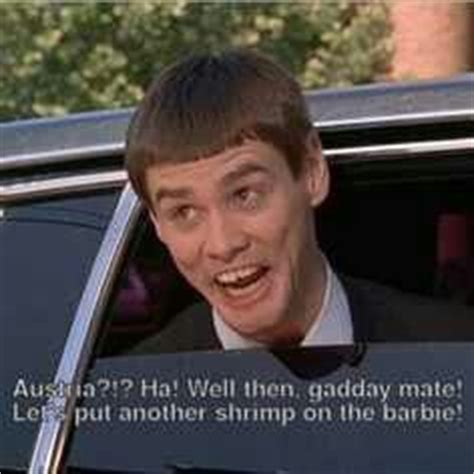 dumb and dumber on quot dumb and dumber quotes aspen quotesgram